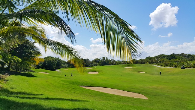 Golf course in a tropical resort